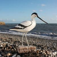Avocet Standing Wooden Bird | Hand Carved Birds